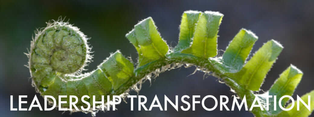Leadership Transformation