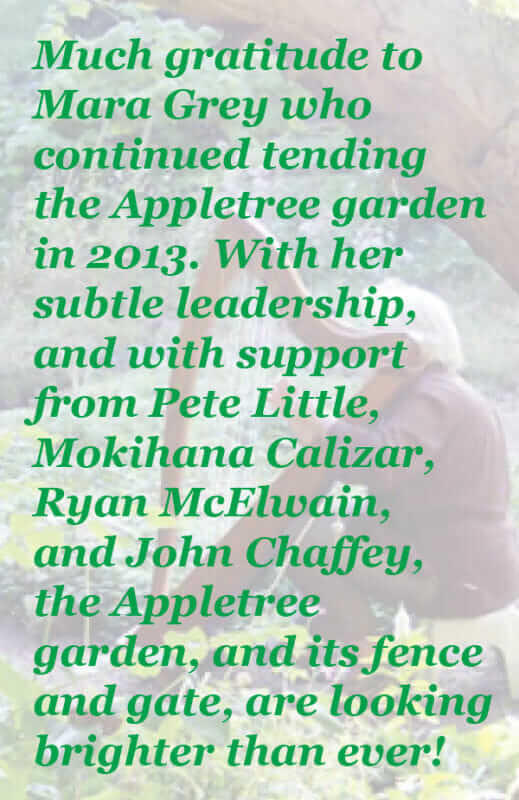 Mara Grey tended the Appletree garden in 2013