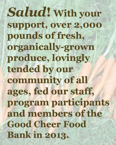 Salud! 2000 pounds of produce fed our staff, participants, and Good Cheer food bank