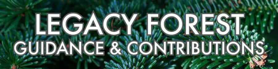 Legacy Forest – Guidance & Contributions