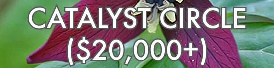 Catalyst Circle ($20,000+)