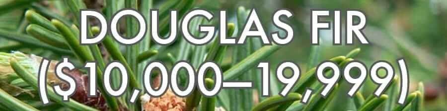 Douglas Fir ($10,000–19,999)